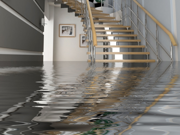 California Basement Waterproofing